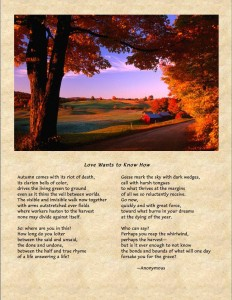 a poem for autumn